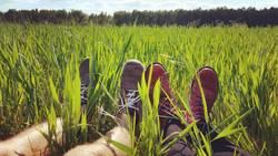 Pause im Feld