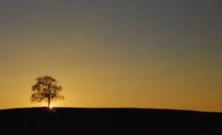 Sonnenuntergang die ganze Nacht ...