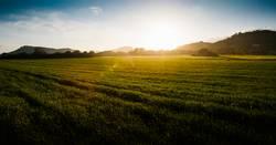 Sonnenuntergang Berge und Felder