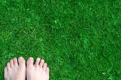 Grüne Füße