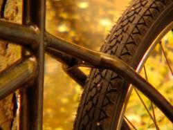 cruisin wheel