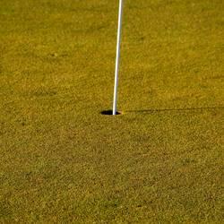 Auf dem Golfplatz II