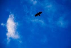 Luftige Höhen