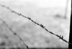 barbed wire of death