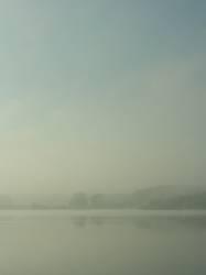 Nebelbild