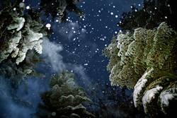 Geist der zukünftigen Weihnacht