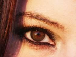 'Der Blick'