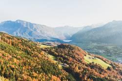Austrian Autumn