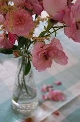 Vielen Dank für die Blumen!