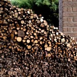 Ordentlich Holz