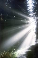 Wadlichtung mit Sonneneinstrahlung
