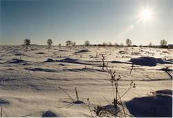 winterwüste