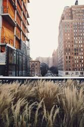 New York City - High Line