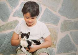 Happy child playing with kitten