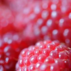himberry