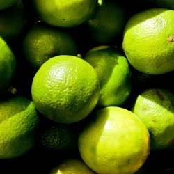 lemoncase