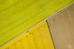 Gelbe Rapsfelder, Acker und Feldwege von oben