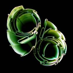 Blume aus Stahl