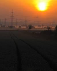 Sonnenaufgang über Köln