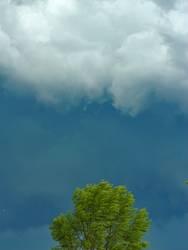 Wetterchen