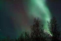 Aurora in Abisko 1