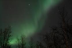 Aurora in Abisko 2