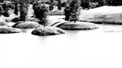 Schwart & Weiß Natur 4