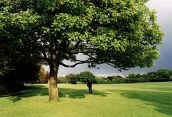 Stadtpark in Dublin