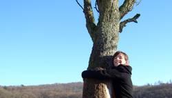 Hug the tree!