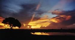 Sonnenuntergan am Wasserloch (2)
