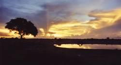 Sonnenuntergan am Wasserloch (1)