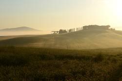 Junimorgen im Val D'Orcia