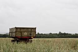 lonely wagon