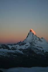 Early Bird am Matterhorn