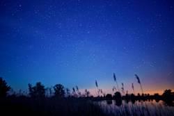 sternklare Nacht
