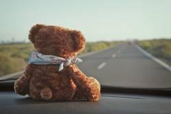 Teddy Per macht Urlaub (2)