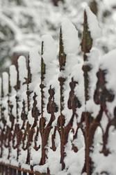 eingeschneiter Zaun