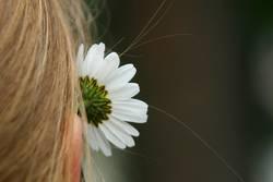 Simone das Blumenmädchen