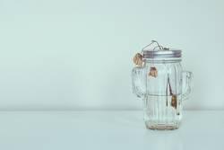 dead flowers in glass jar on white background