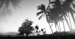 hawaii, ick träum von dir.