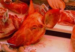Schweinekopf