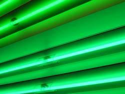 its green