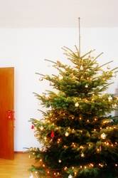 merry big christmas