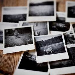 World Photography Day - Celebrate Photography with your friends