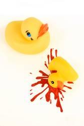 Schluss-Aus-Ente