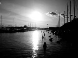 Helsinki Sailing Harbour