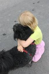 hund liebe 2