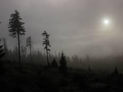 und ob ich schon wanderte im finsteren Tal...