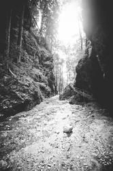 Lichtblick | Lichtblick
