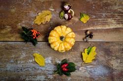 Herbst im Detail 2